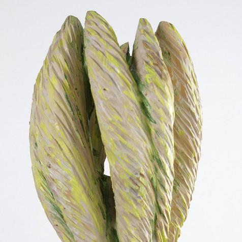 Wechselständiger Korbblütler, 2015